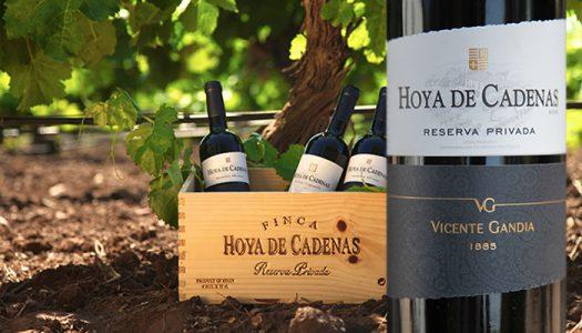 Finca Hoya de Cadenas