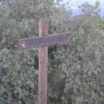 El Garbí: La naturaleza del descuido