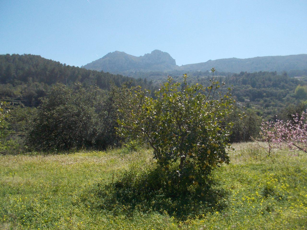 Hermoso valle