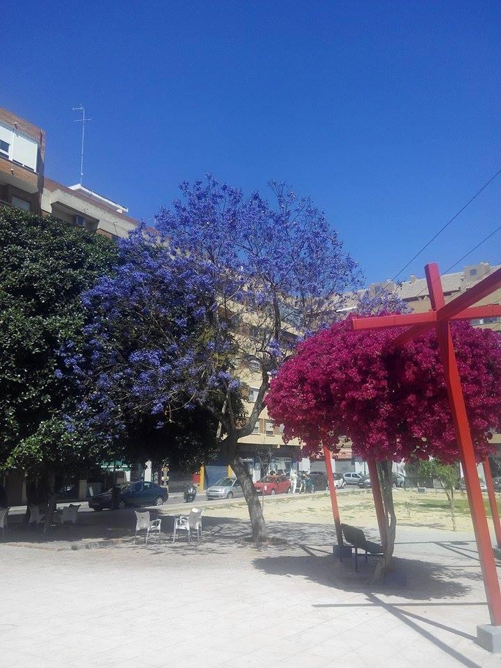 Plaza del Bisbe Laguarda