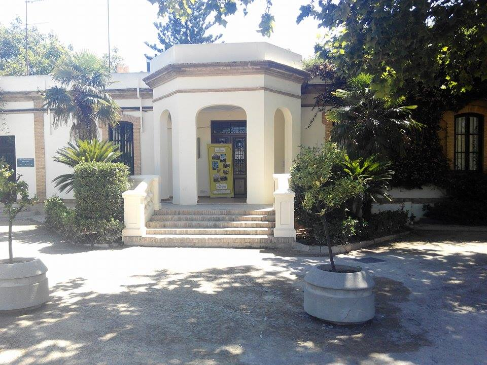 Observatorio Munical del árbol