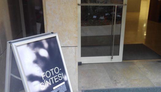 Nueva exposición en el Jardí Botànic: FOTO-SÍNTESI