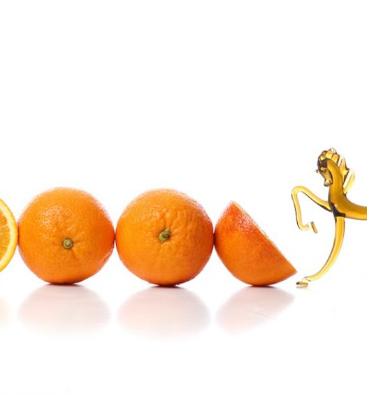 naranjas de valencia las mejores de todo el mundo