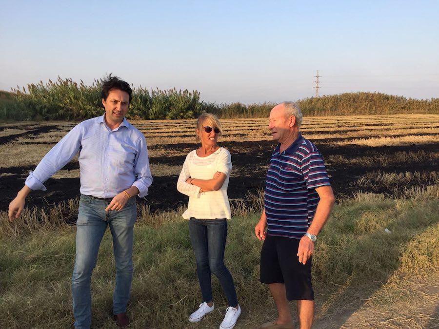 Vicente Betoret, Ana Basco y José Manuel Gironés en l'Albufera, donde los agricultores queman la paja de arroz