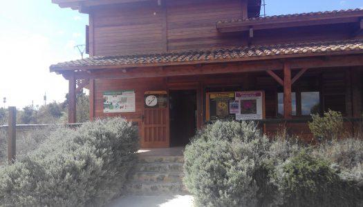 """Exposición: """"Les plantes del nostre poble"""" en la Casa de Fusta en Villamarxant"""