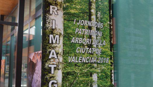 Fes-te arbre: Arborimatges, nova exposició a Vivers