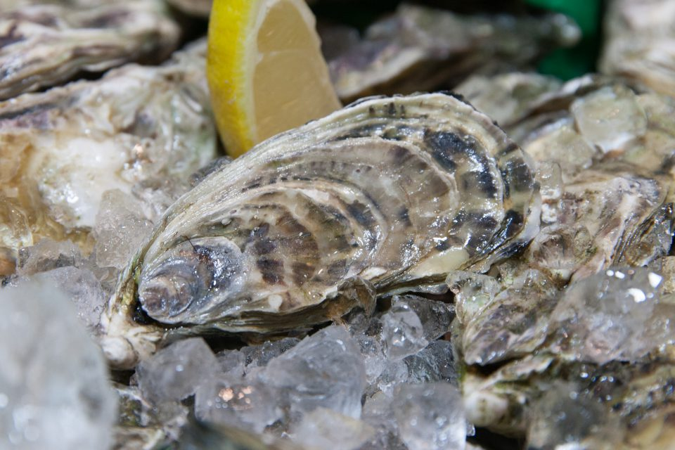 Dónde comer las mejores ostras en Valencia: Le Claire Oyster Bar