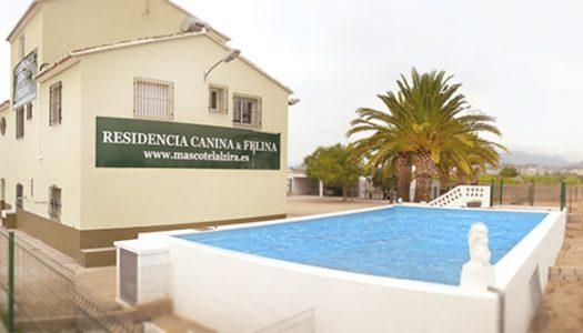 MASCOTEL, EL MEJOR HOTEL PARA MASCOTAS EN ALZIRA