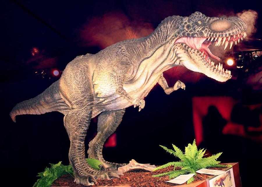 La exposición Dino Expo llega a Valencia