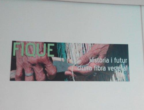 Fique, historia y futuro de una fibra vegetal