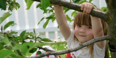 Escuela de Verano al Botànic
