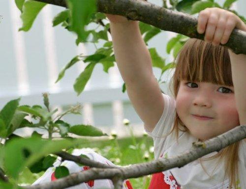 Escuela de verano al Botànic: talleres infantiles en junio y julio
