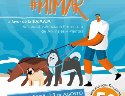 Playa Can acoge la primera pasarela canina solidaria en una playa valenciana