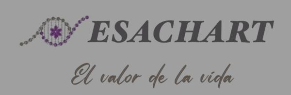 Esachart Valencia